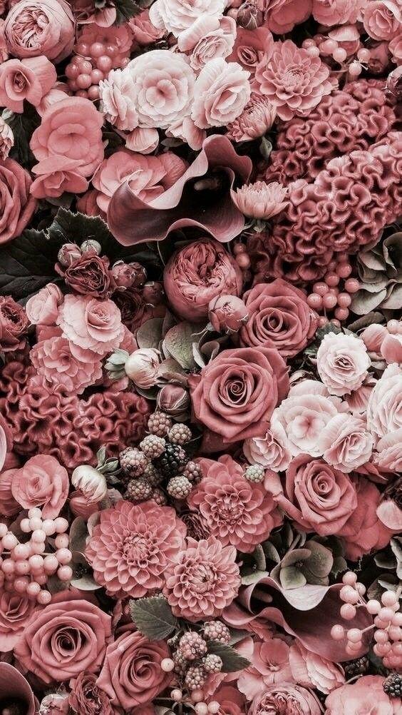 Tapete Mit Blumen In Rosentonen Altrosa Blumen Mit Rosentonen Tapete Trendy Flowers Flower Aesthetic Pink Flowers
