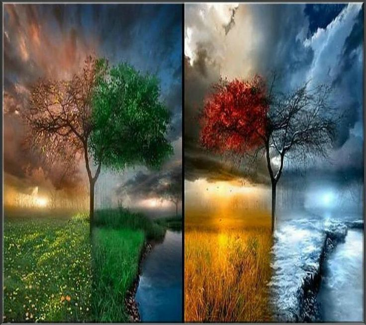 1000+ Images About All Four Seasons On Pinterest