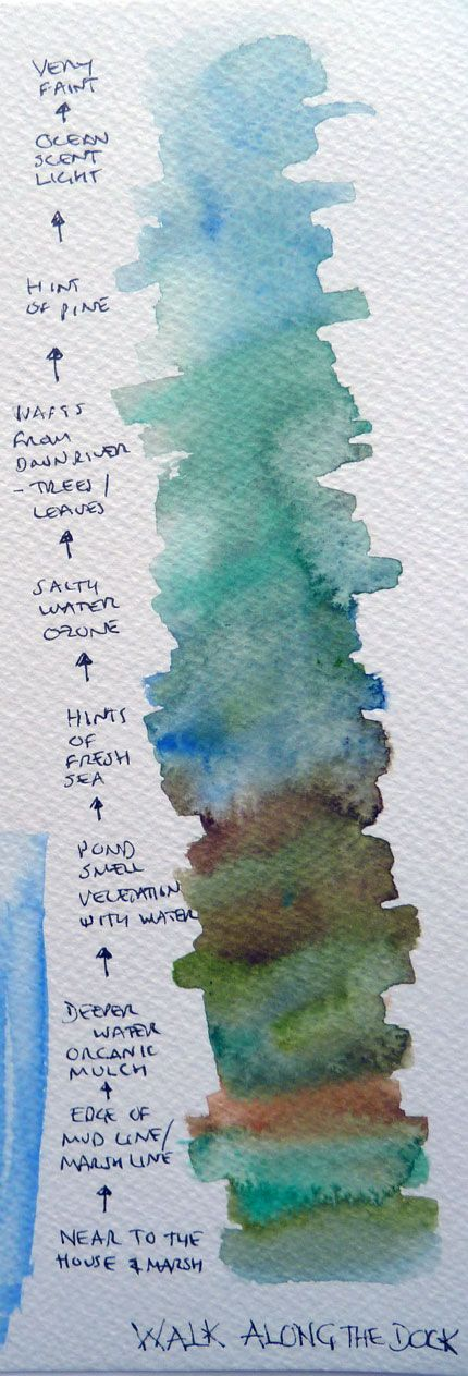 Experiments with smells and colours in Cape Cod.