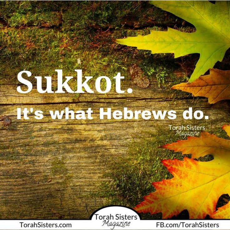 Sukkot ~ Feast of Tabernacles .... It's what Hebrews do! Have you crossed over? Leviticus 23
