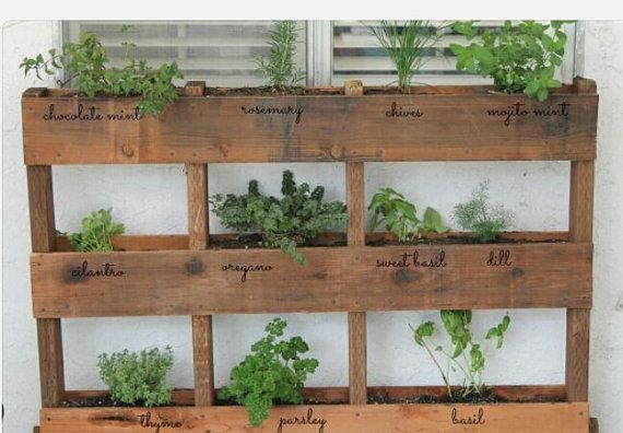Hey, I found this really awesome Etsy listing at http://www.etsy.com/listing/165608177/urban-rustic-plant-arranger