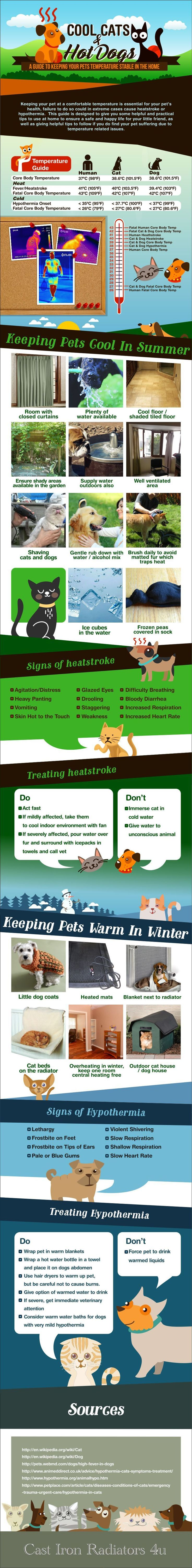 Summer's here and in full swing! With hot weather comes new needs for your furry friend. Fur can add to the summer heat and lead to heat stroke in pets, so it's important to be on the lookout for its symptoms and to know how to prevent it. #dog #cat #infographic
