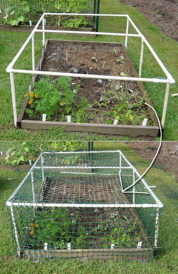 6. Build a multipurpose raised bed protective cover.- Top 20 Low-Cost DIY Gardening Projects Made With PVC Pipes