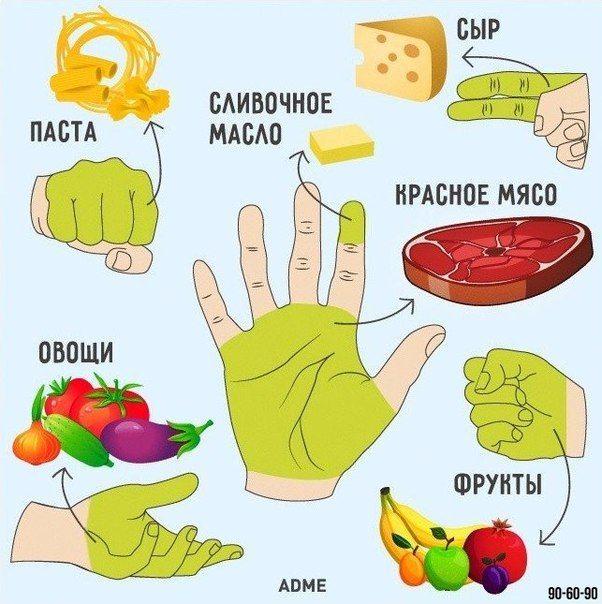 Сколько еды нужно съедать за раз  На заметку  - Пригоршня из двух сложенных ладоней — это то количество овощей, которое нужно съесть за день. - Передняя часть кулака — дневная норма углеводов (рис, другие каши, макаронные изделия, хлеб). - Открытая ладонь без учета пальцев показывает, какой кусок мяса нужно съедать в день. - Сжатый кулак по объему равен тому количеству фруктов, которые нужно съесть за день для поддержания крепкого здоровья. - Верхняя фаланга указательного пальца — то…