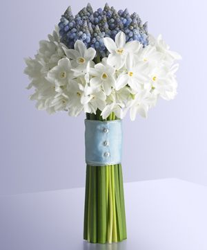 Paperwhites and grape hyacinth would probably be expensive since you would need many stems due to their diminutive nature.