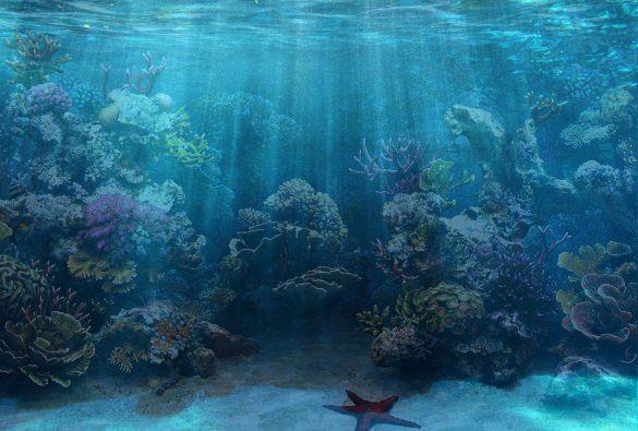 30 Fish Tank Background Printable In 2020 Aquarium Backgrounds Aquarium Live Wallpaper Fish Background