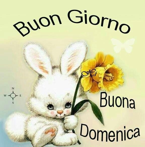 48 best images about buongiorno buona domenica on for Foto buongiorno gratis