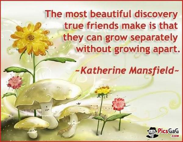The Most Beautiful Discovery True Friends Make Is That They Can Grow Separately - Friendship Quote