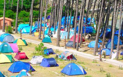 Buscador de Campings