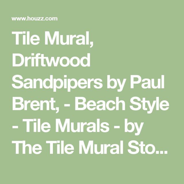 Tile Mural, Driftwood Sandpipers by Paul Brent, - Beach Style - Tile Murals - by The Tile Mural Store (USA)