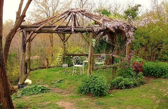17 best images about log arbors gazebos on pinterest twig furniture furniture and rustic - Pergola climbing plants under natures roof ...