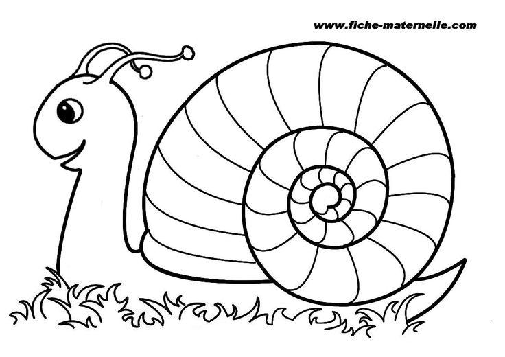 Escargot à colorier