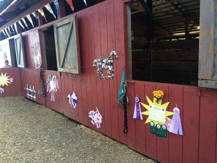 Horse Stall Decorations Billingsblessingbags Org