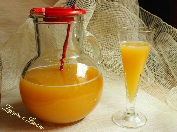 Questa bibita analcolica agli agrumi è un drink dissetante perfetto da servire come aperitivo o da gustare in qualsiasi altro momento della giornata.