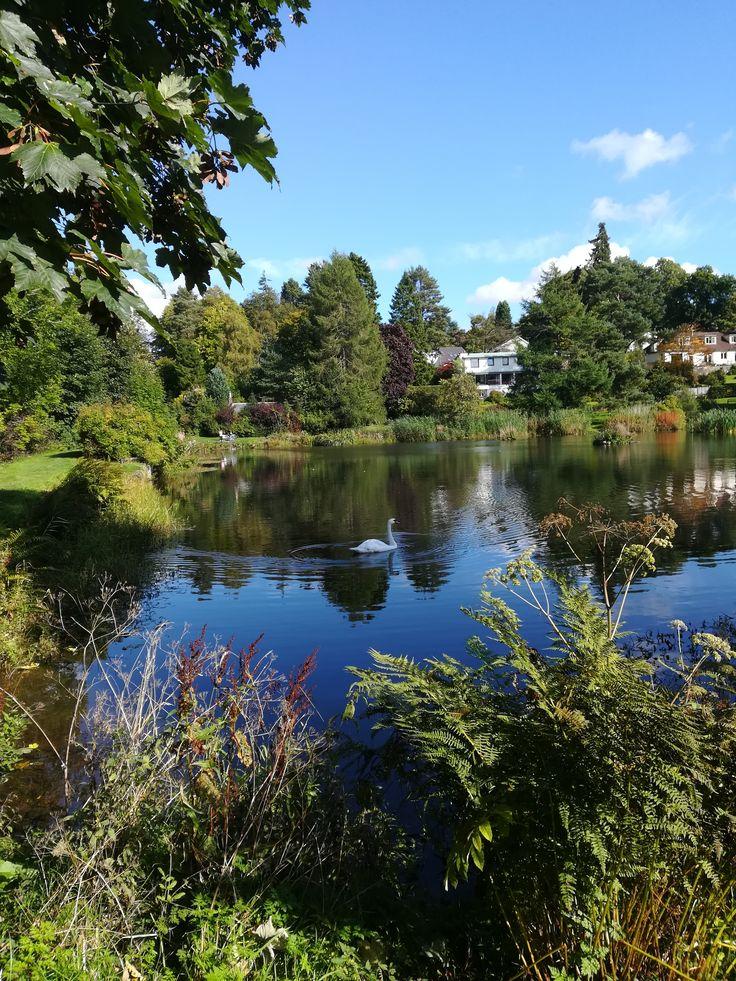 Dunblane, Ochlochy Park Sept 2017