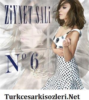 ziynet-sali-2015-no6-albumu