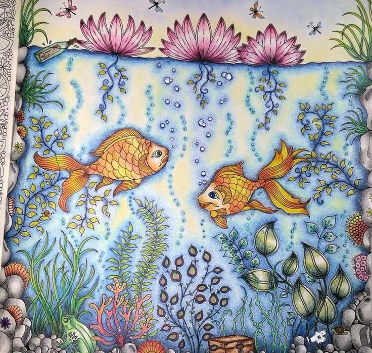 26 Best Fish Secret Garden Peixe Jardim Secreto Images On