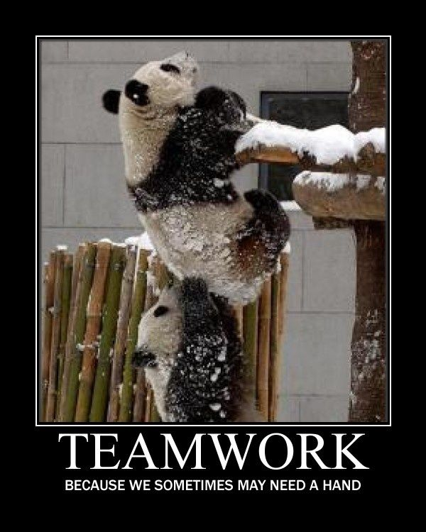 Inspirational Teamwork Quote