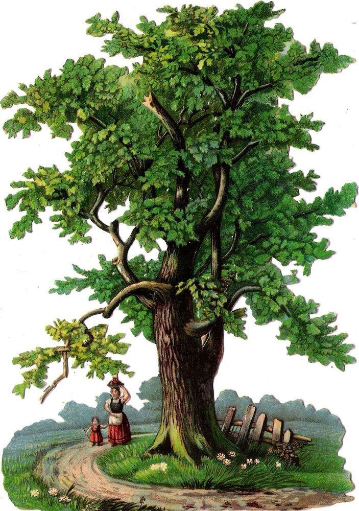 Oblaten Glanzbild scrap die cut chromo Baum  XL 17cm  tree arbre Zaun fence