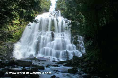 Nelson Falls  Franklin-Gordon Wild Rivers National Park, Tasmania, Australia