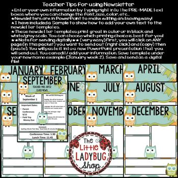 Best 25+ Owl newsletter ideas on Pinterest Owl theme classroom - newsletter template for word
