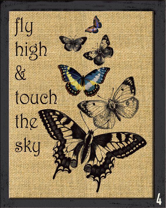 Custom Vintage butterflies ArtCustom Dictionary by HappyHouseNo1
