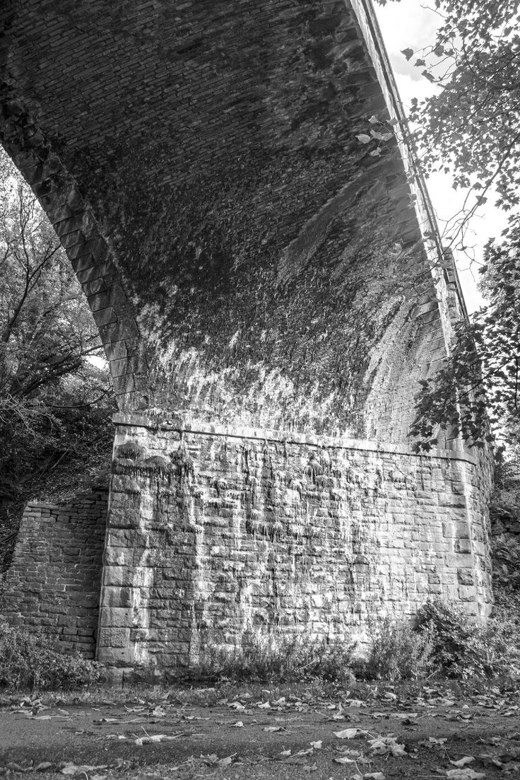 Taken on the Calder & Hebble Navigation looking up to Copley Railway Viaduct. More information on my blog at, www.colingreenphotography.co.uk
