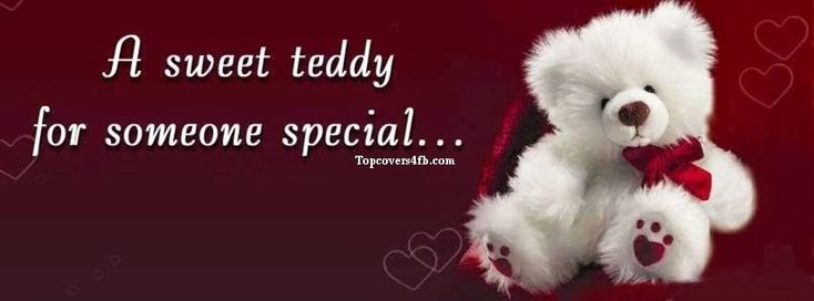 This is one of the best Sweet Teddy facebook covers for your facebook covers. If…