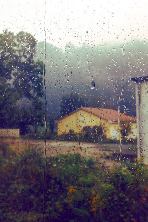 Ohh.. a rainy day on the farm..i want to get in this photo ..i really do.