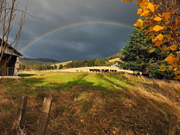 #Rainbow; taken from the Glen Huon Road near Judbury. Photo by Gary Tew of #Hobart; article for www.think-tasmania.com