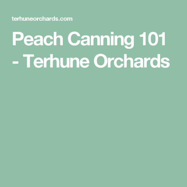 Peach Canning 101 - Terhune Orchards