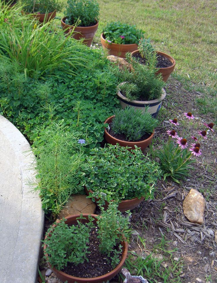 herb container garden. . .could do this in our backyard.