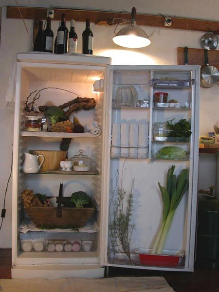 wallpaper designs for kitchens 17 best ideas about refrigerator on 6972