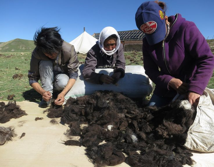 Herders on the Qinghai plateau sorting newly collected yak wool.  www.khunu.com