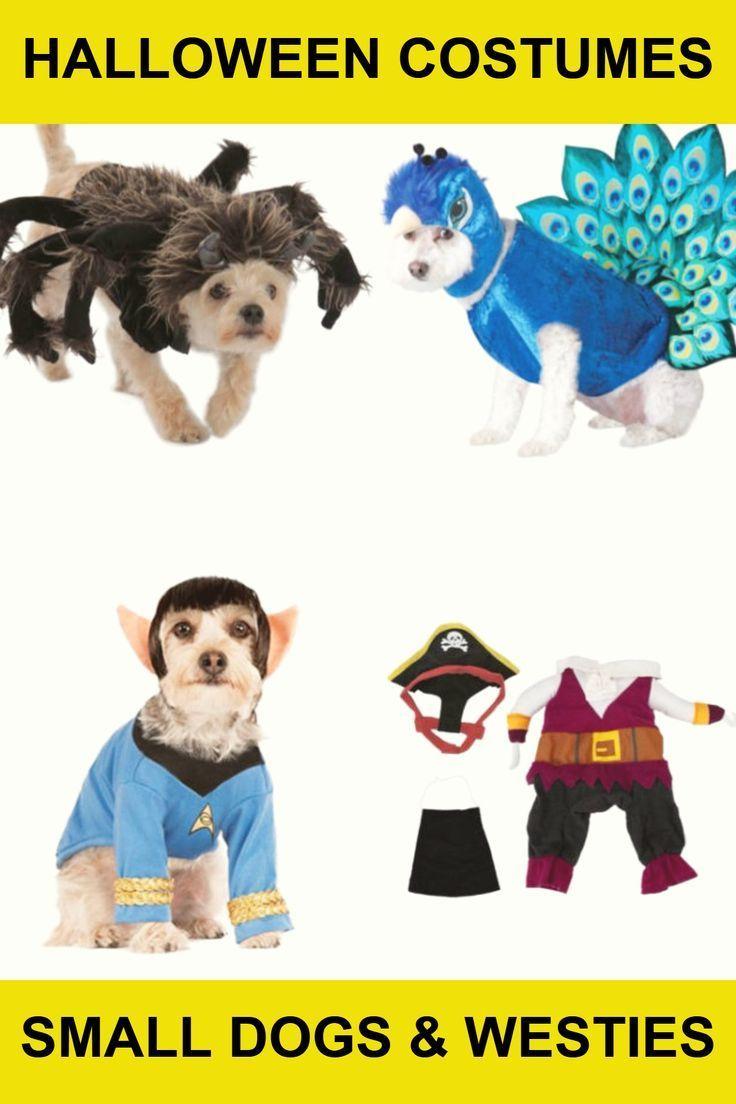 Best Westie Terrier Dog Halloween Costumes 2020 Dog Halloween