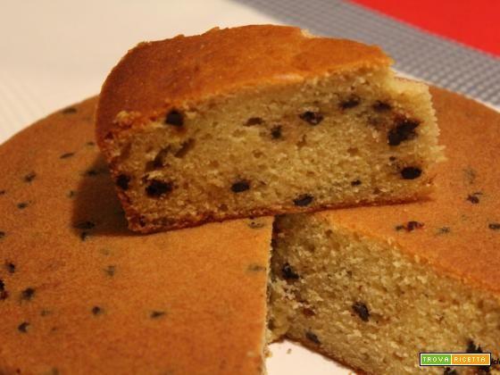 Torta soffice con farina di farro, gocce di cioccolato e bacche di goji  #ricette #food #recipes