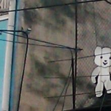 bear sign in Cluj (these are communist bears :-) )