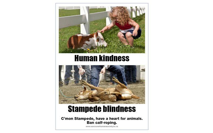 Vancouver Humane Society targets Calgary Stampede event