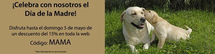 Tienda de animales online, accesorios y productos para mascotas
