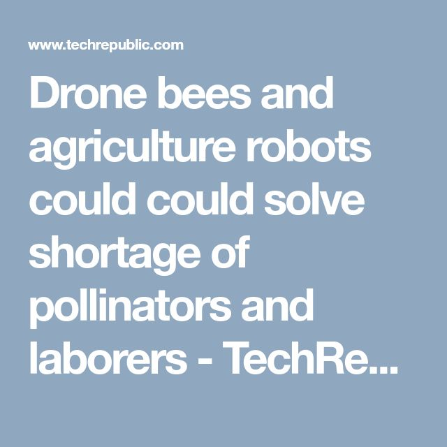 Drone bees and agriculture robots could could solve shortage of pollinators and laborers - TechRepublic