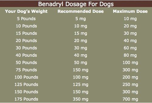 Benadryl Dosage For Dogs Is Critical To Your Pet's Safety