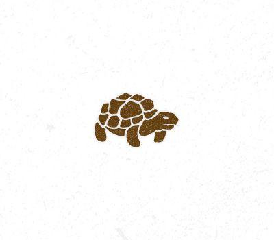 Tortoise Icon Design