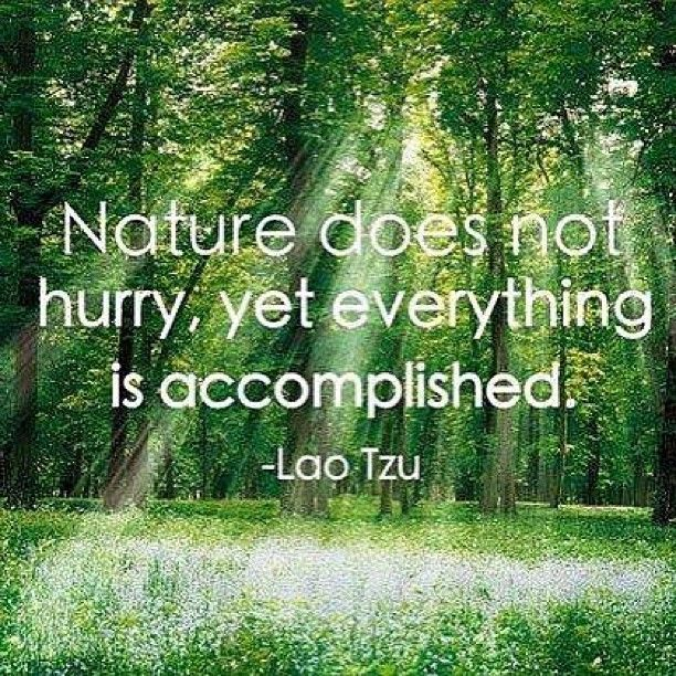 """""""Nature does not hurry, yet everything is accomplished."""" - Lao Tzu"""