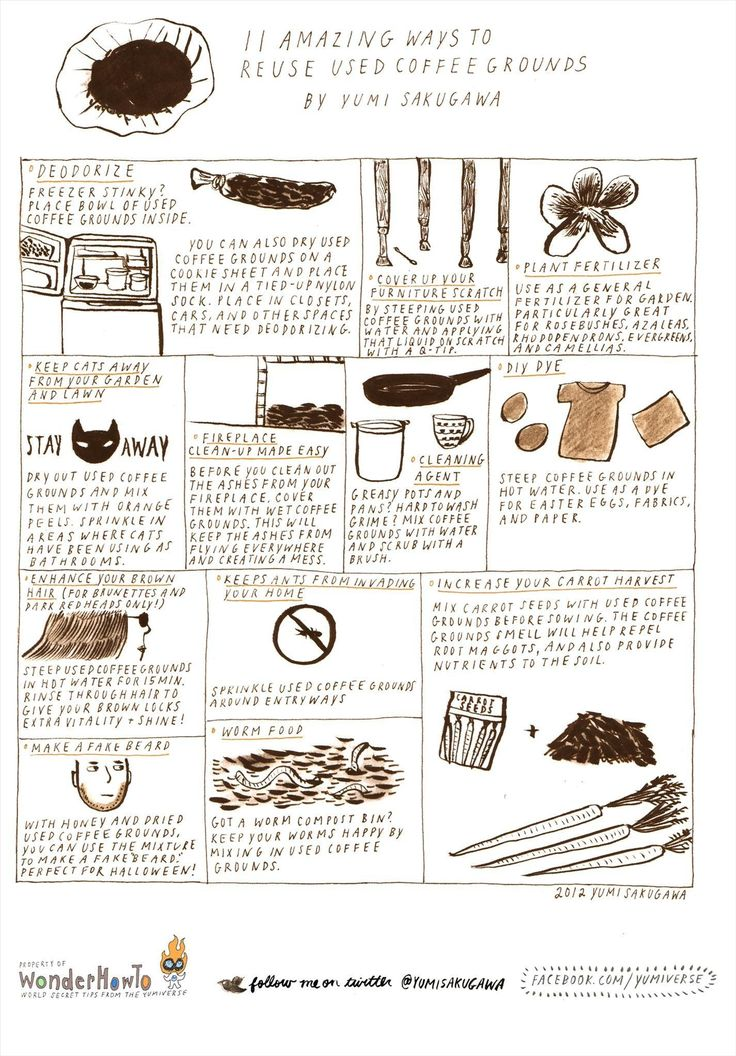 Best 25 used coffee grounds ideas only on pinterest - How to use coffee grounds in garden ...