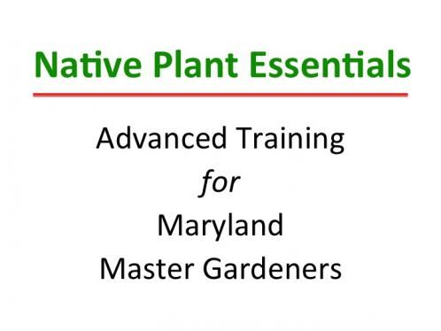 Native Plant Essentials Online Class | University of Maryland Extension