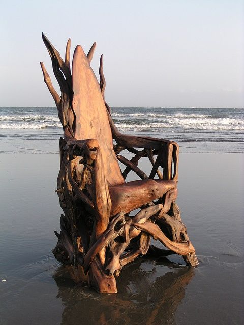 How cool is this! A driftwood chair!