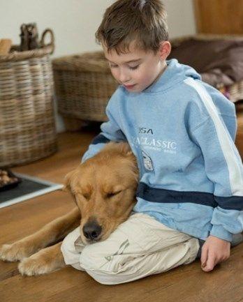 Positief effect PAWS training - huishonden en autisme