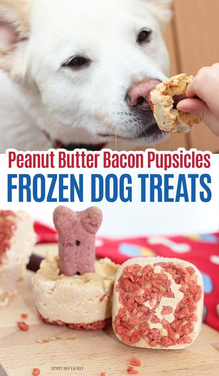 Peanut Butter Bacon Pupsicles Frozen Treats For Dogs Homemade