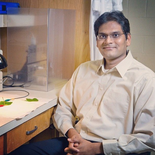 Le piante sono campioni indiscusse di efficienza: riescono a trasformare tutti i raggi solari in energia. Gli attuali pannelli fotovoltaici, invece, hanno una resa che va dal 12 al 18 per cento. ☼ http://lifeg.at/17kXk5b Per questo Ramaraja Ramasamy (sulla destra) e il tuo team di ricercatori dell'Università della Georgia stanno lavorando a un pannello fatto di cellule vegetali. Se la natura è perfetta, perché non imitarla?