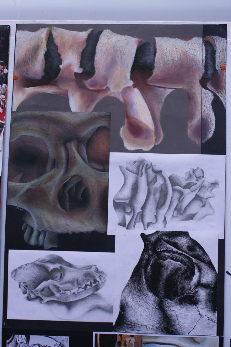 Higher Expressive research drawings Morrison's Academy